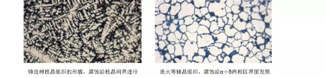 金相显微镜在文物保护中的应用