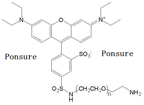 结构式: 应用简介:     芃圣生物(ponsure)的罗丹明b-peg氨基 (rb