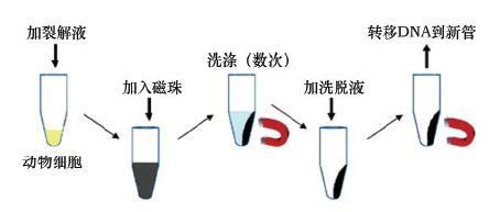 电路 电路图 电子 设计 素材 原理图 444_193