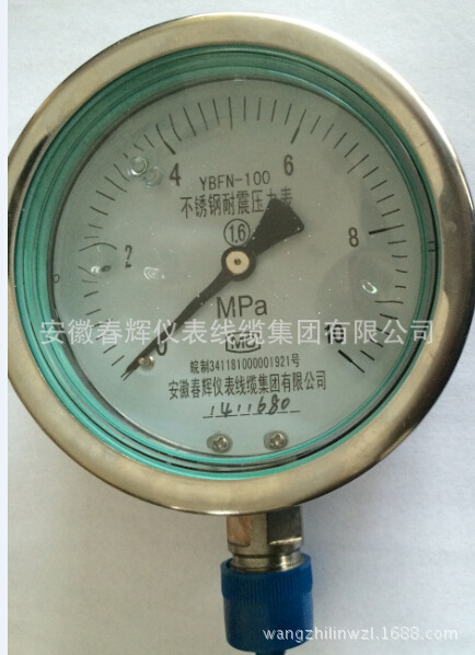 不锈钢耐振压力表