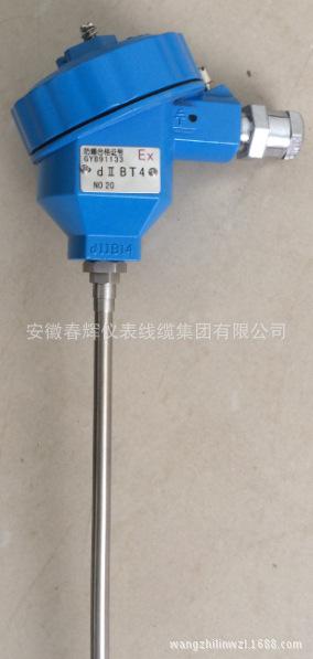 WZPK-136铠裝熱電阻