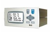 苏州迅鹏WPR25R型压力无纸记录仪