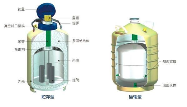 国产金凤小容积液氮罐YDS-3贮存型液氮生物容器