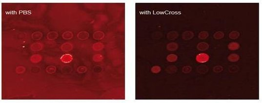 低交叉反应缓冲液(LowCross-Buffer|HAMA阻断剂替代品)现货促销