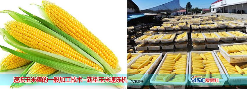 **玉米速冻机