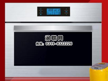 家用嵌入式电蒸箱库号:RL053493-河南商用蒸箱和快速蒸箱完整性