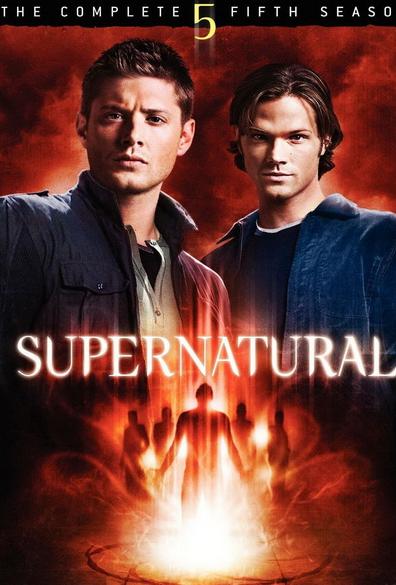 在线观看《邪恶力量第五季》高清版—《邪恶力量第五季》快播下载