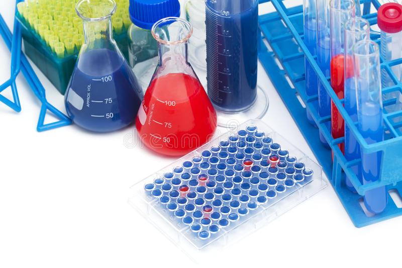 人可溶性肿瘤坏死因子α受体(sTNFαR)ELISA